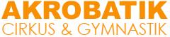 Stockholm Acrobatic Academy – Allsidig träning med fokus på kroppskontroll
